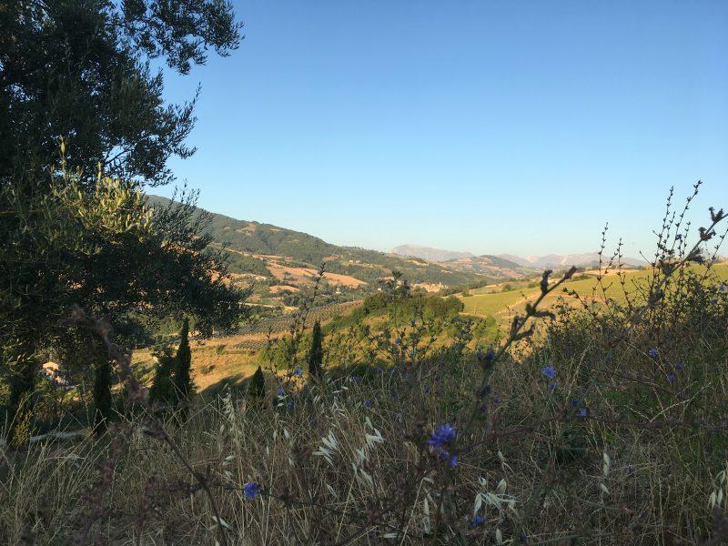 Le Marche scenery, Italy villa holiday