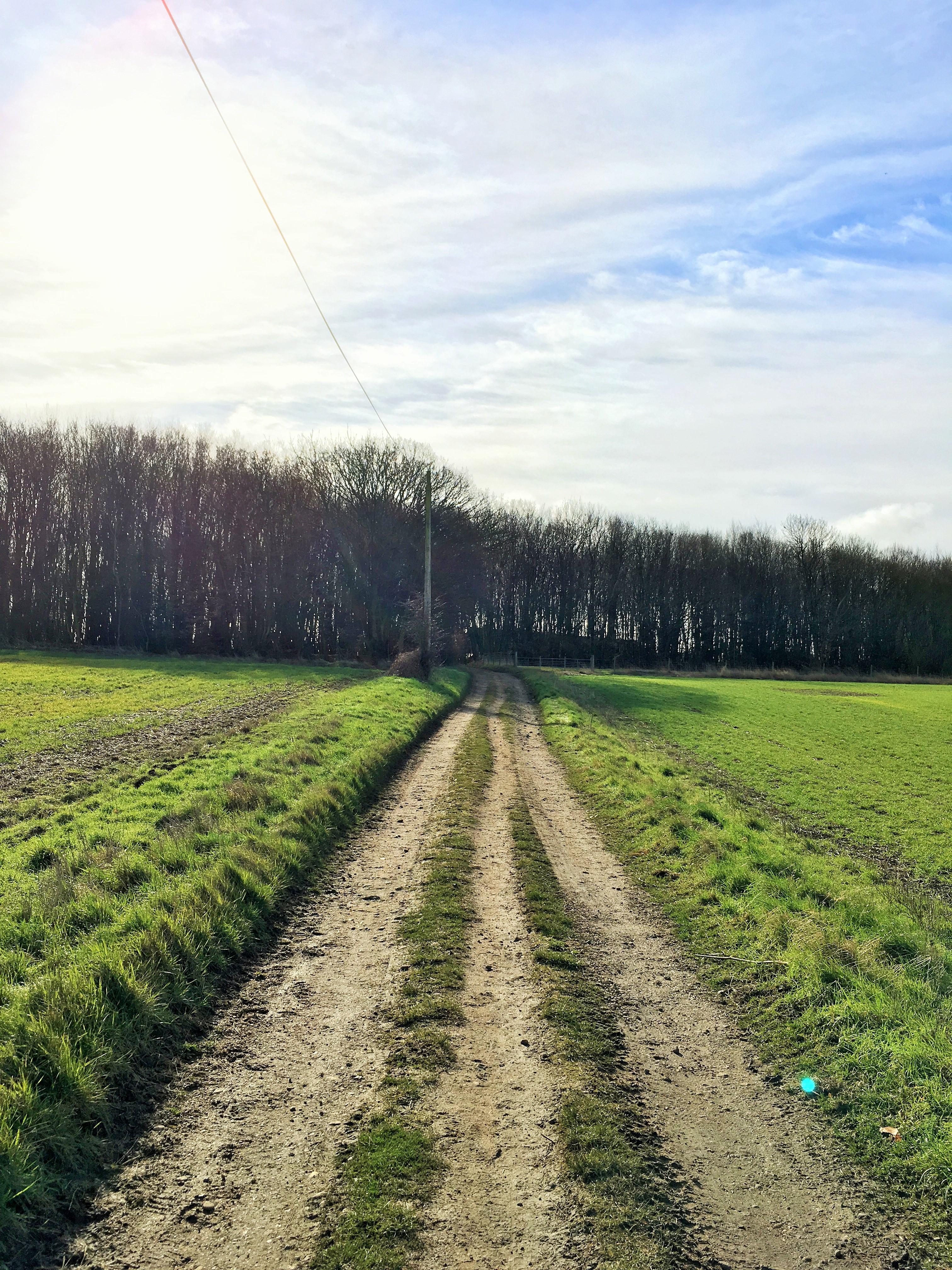 Farm tracks in Watton at Stone