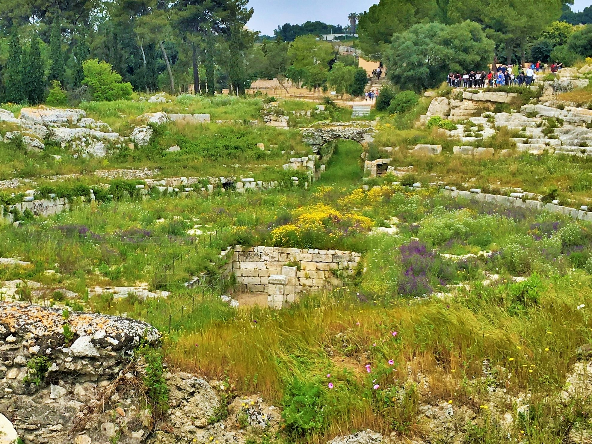 The Graeco-Roman archaeological site of Syracuse