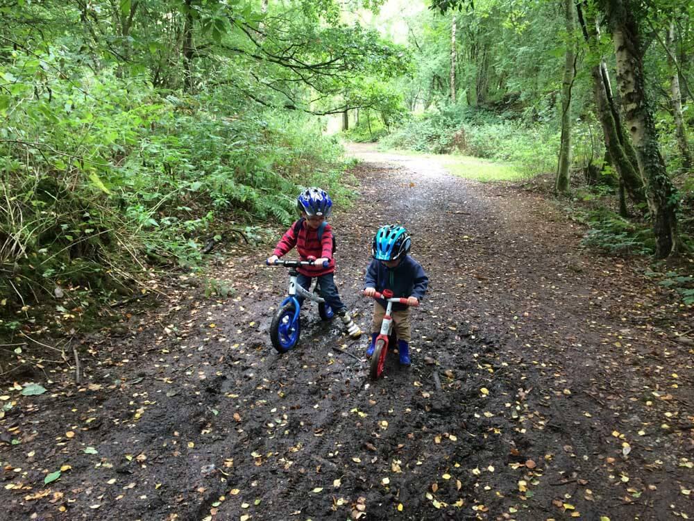 Children on bikes in woods at Mardley Heath