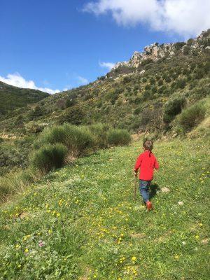 walking at Milia