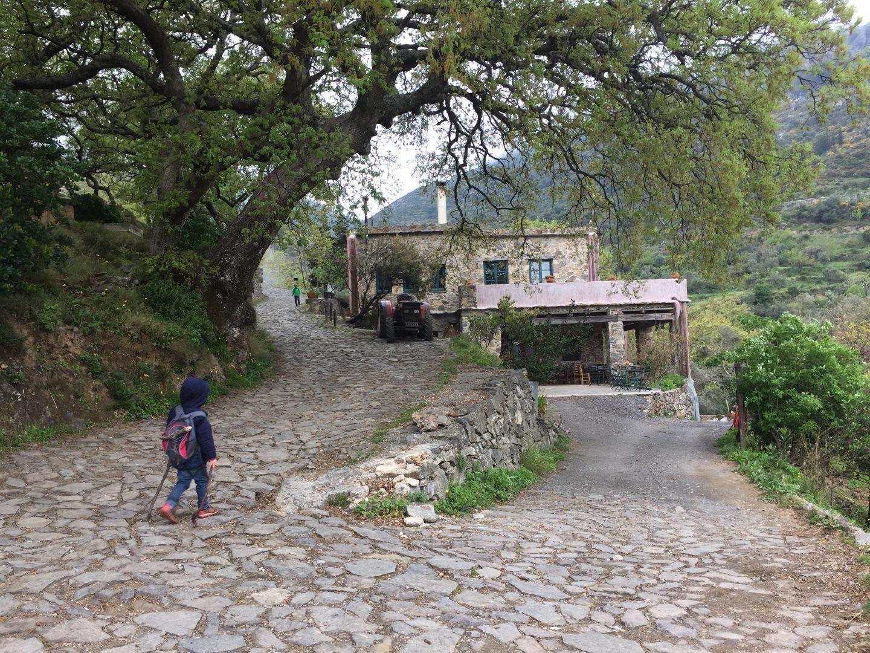 walk at Milia