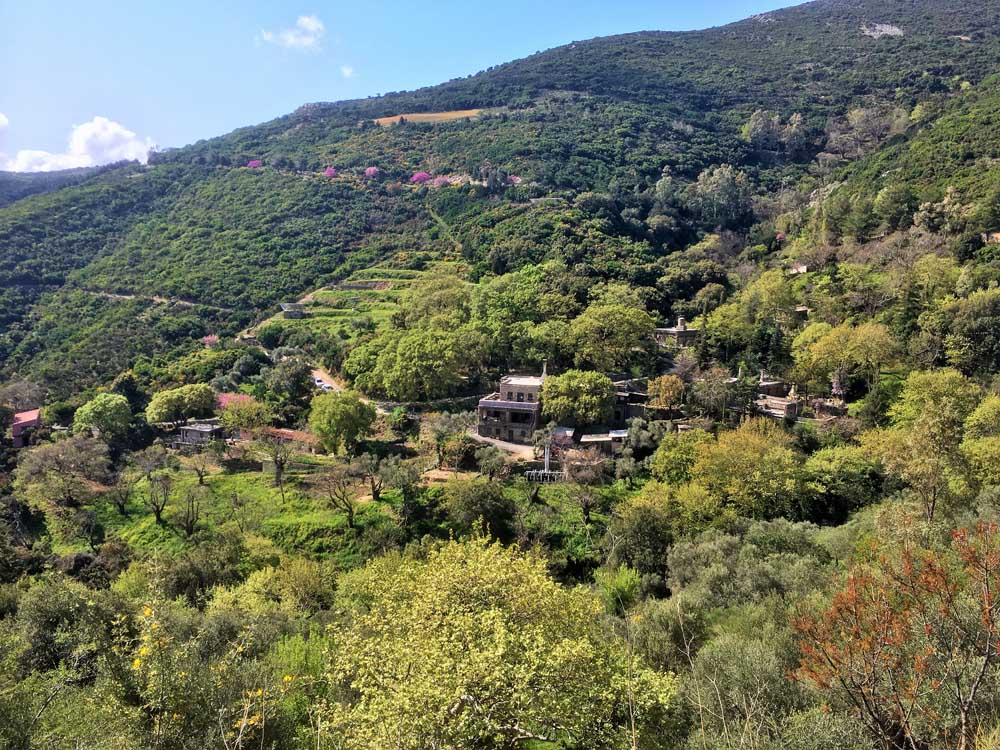Milia Mountain Retreat houses dotted on the hillside in crete greece