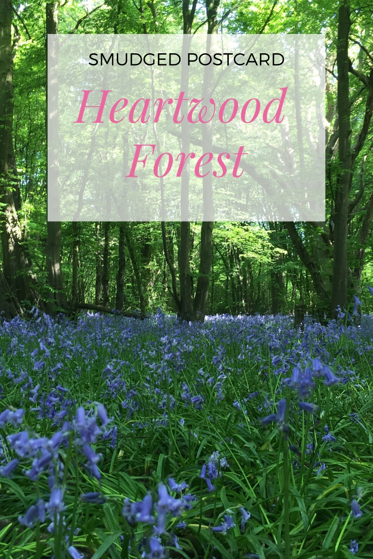 heartwood forest smudged postcard