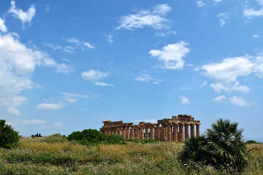 selinunte greek temple in field of wild flowers western sicily