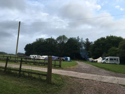 Woodland field at Nettwood Farm campsite