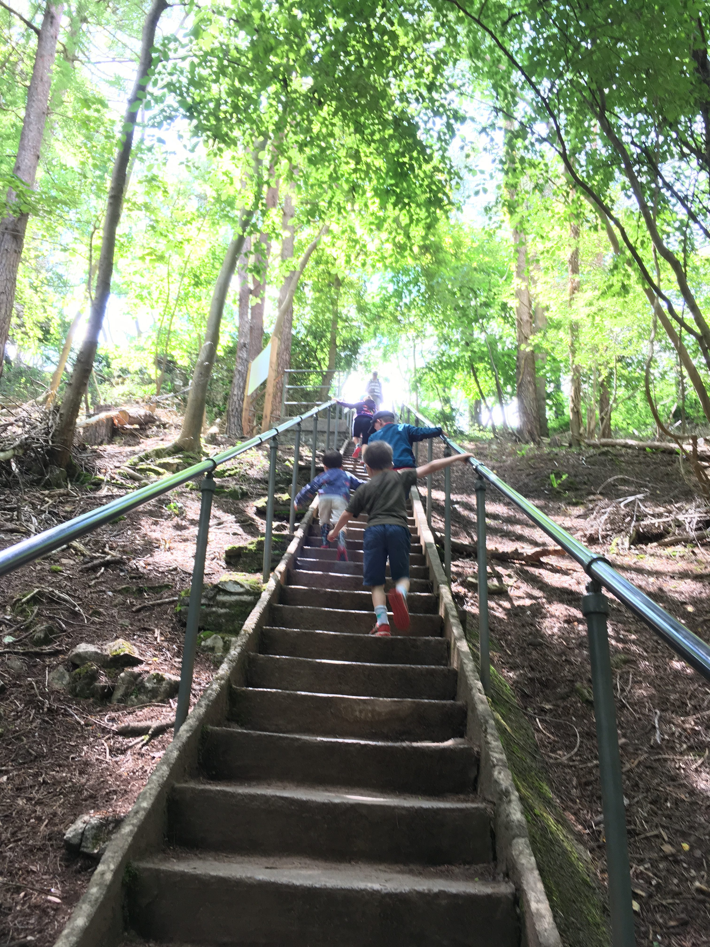 Racing up the steps of Jacob's Ladder at Cheddar Gorge, Somerset