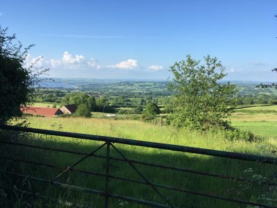Views from Nettwood Farm
