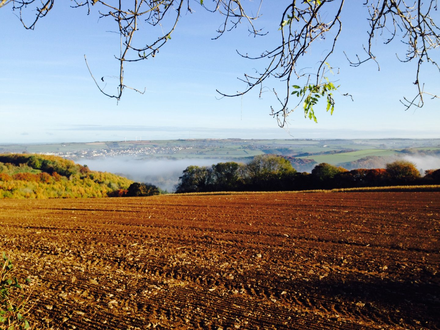 Scenery surrounding Torridge House Cottages Devon, farm stay in Devon