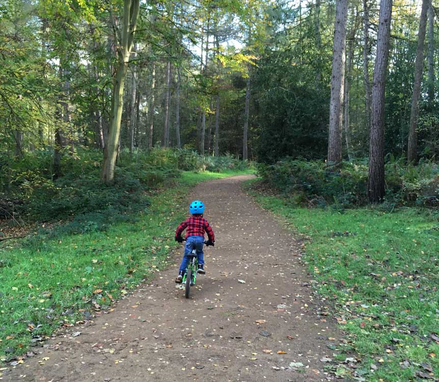 boy cycling along woodland path norfolk family short break ideas