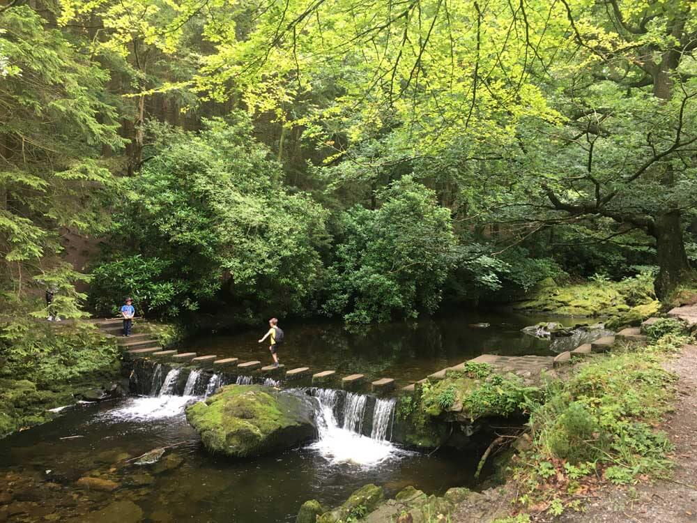 people crossing stepping stones over river at Tollymore Forest Park in Northern Ireland