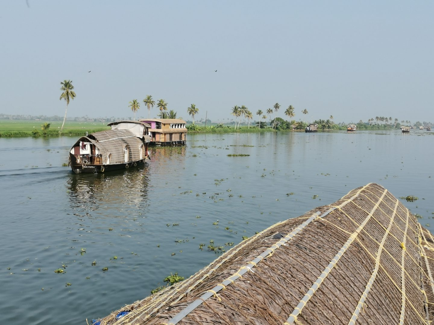 backwaters boat trip from Allepey with kids, India family holiday
