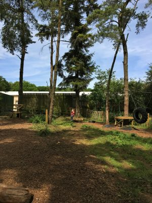 The low ropes course at Far Peak Camping