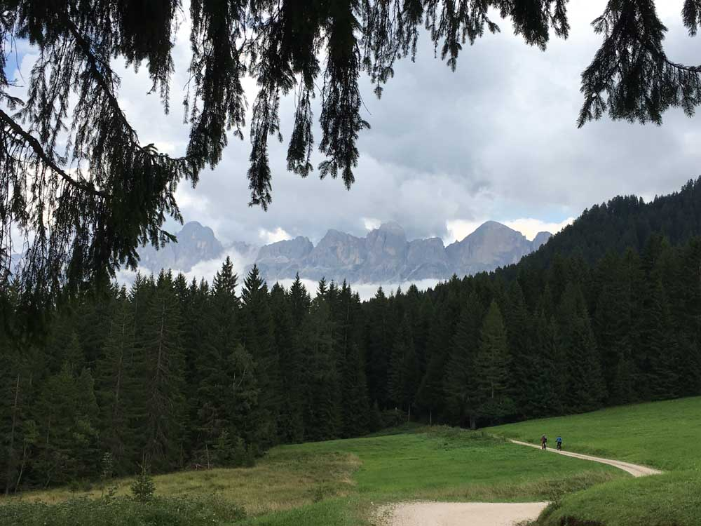 Cycling to Lake Carezza with trees and meadow, dolomites italy