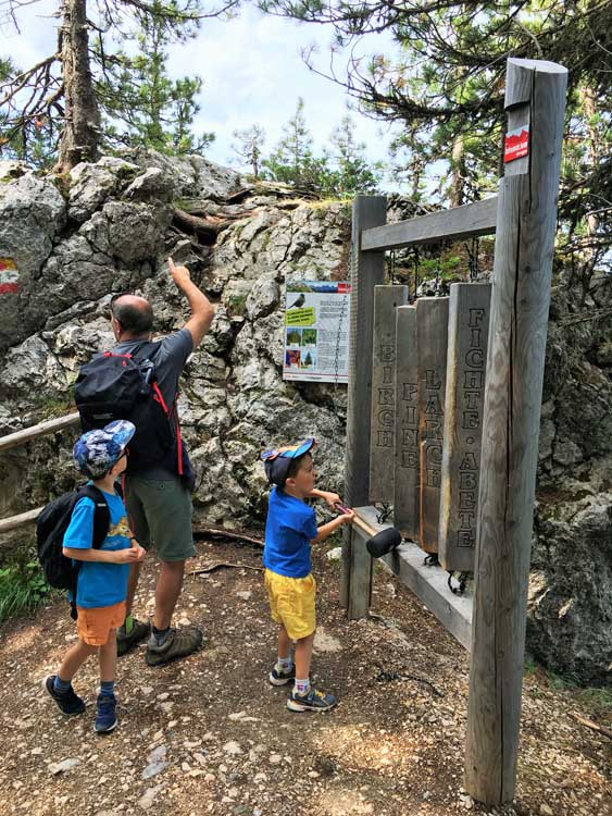 Dolomites with kids an alpine xylophone