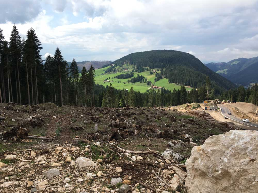 Alpine landscape with storm damage in the dolomites with kids