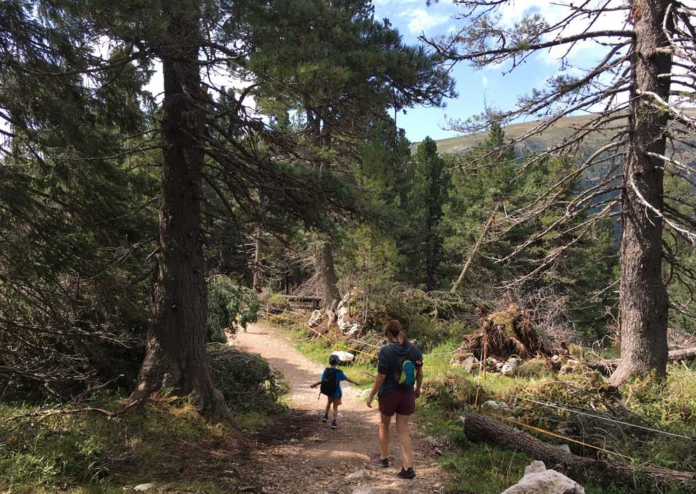 people walking along pathway through trees in Dolomites mountains with kids summertime italy