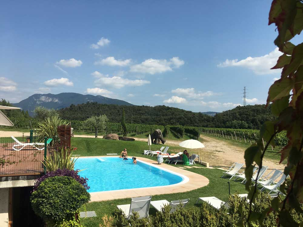 Outdoor swimming pool on vineyard farm in Italy