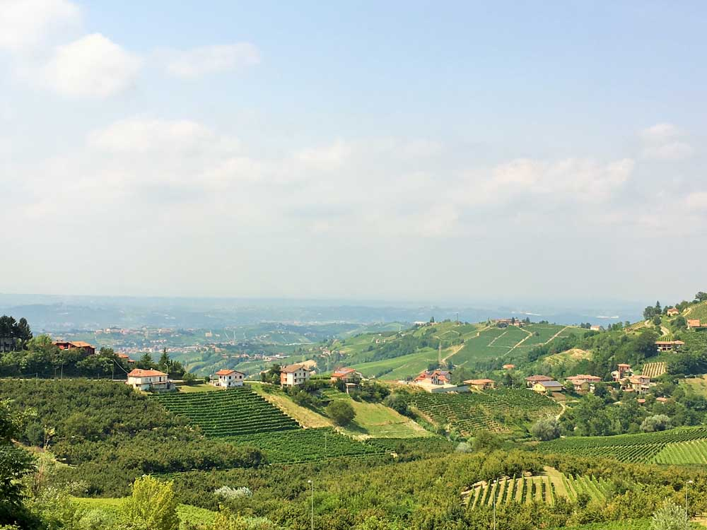 Vineyards of the Langhe wine region of northern Italy, European family road trip from UK to Italy