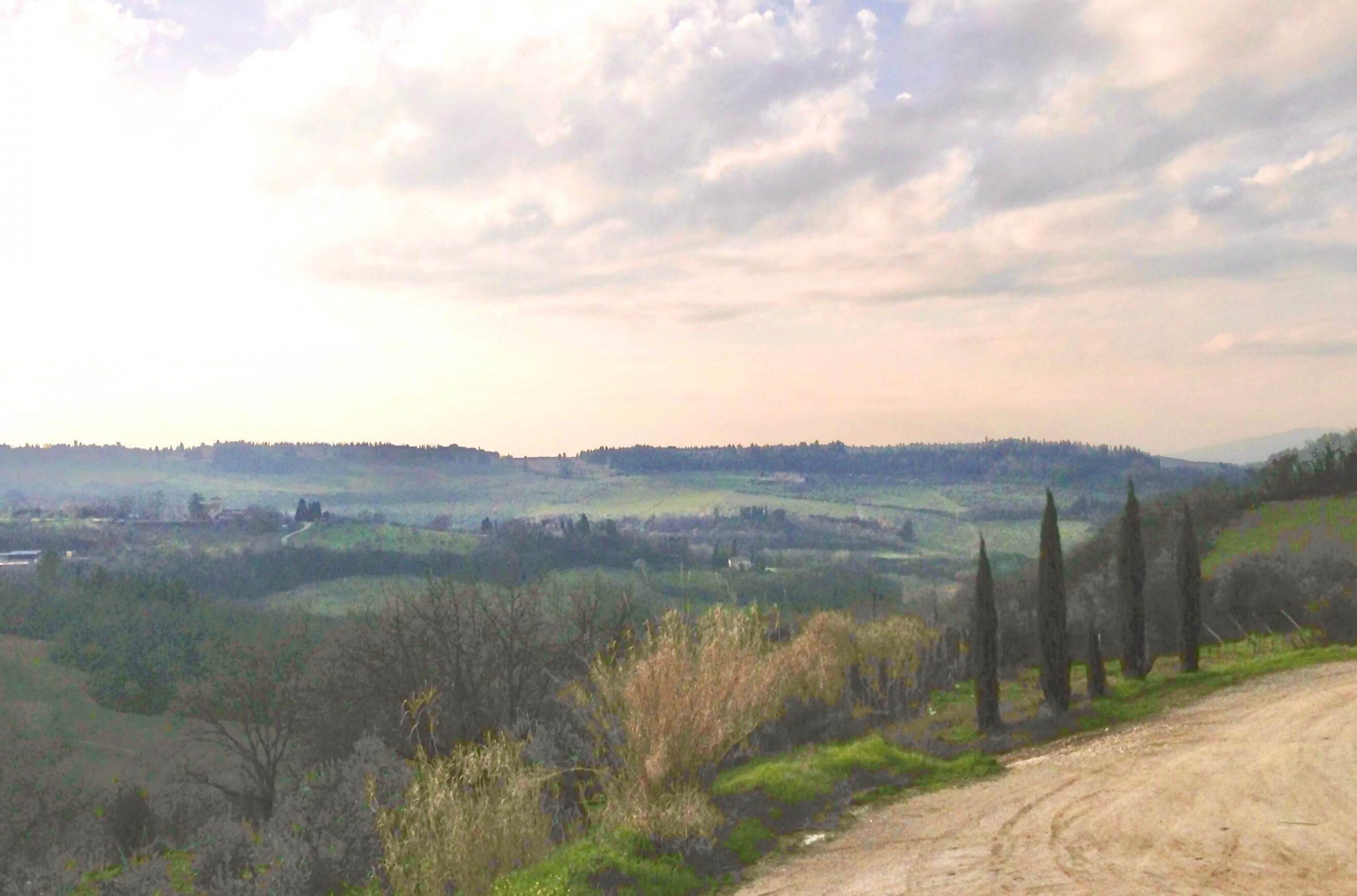 Tuscan landscape with cypress trees, countryside surrounding Fattoria Corzano e paterno