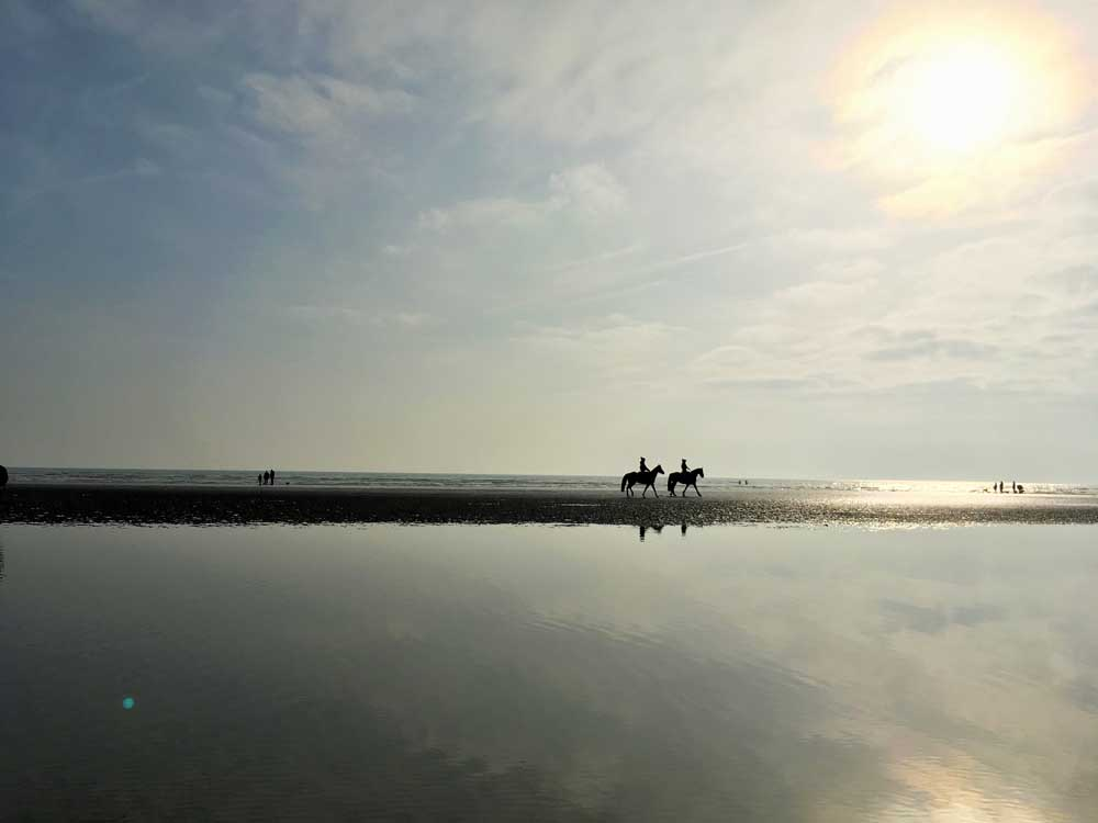 Horse riders on UK beach Camber Sands at sunset