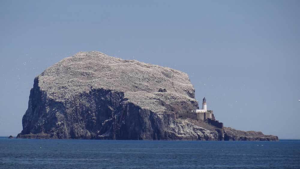 Bass Rock in the sea off North Berwick in Scotland