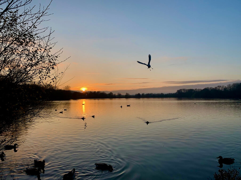 sunset over lake at Rickmansworth Aquadrome, Places to visit in Hertfordshire