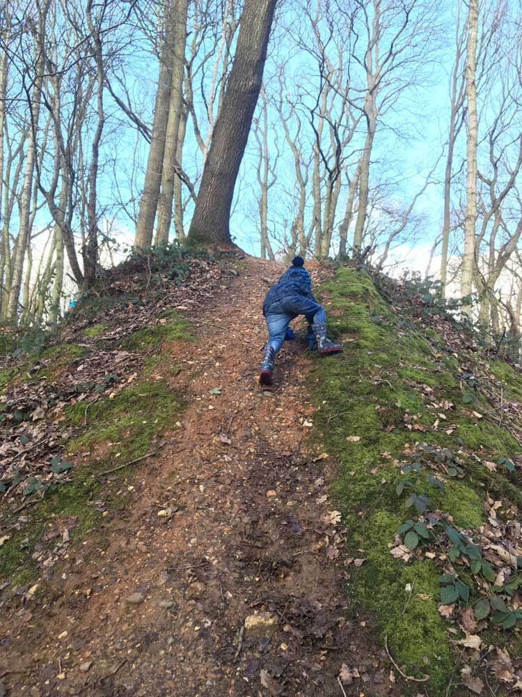 Child climbing slope in woods