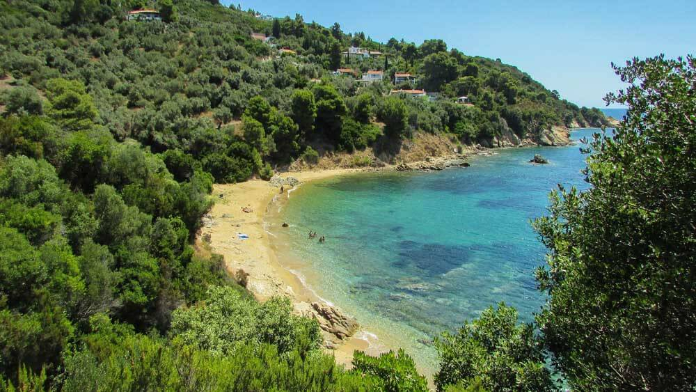 sandy cove backed by forests in Skiathos