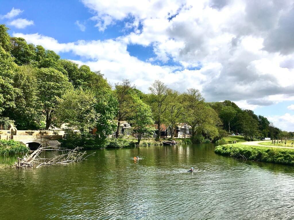 Wild swimming in the River Lea in Hertfordshire