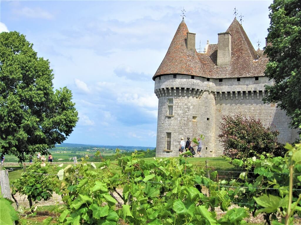 chateau with vines in foreground in france