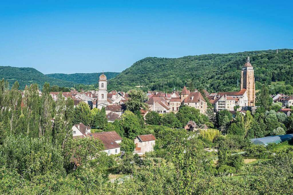 terracotta rooftops amid trees in France
